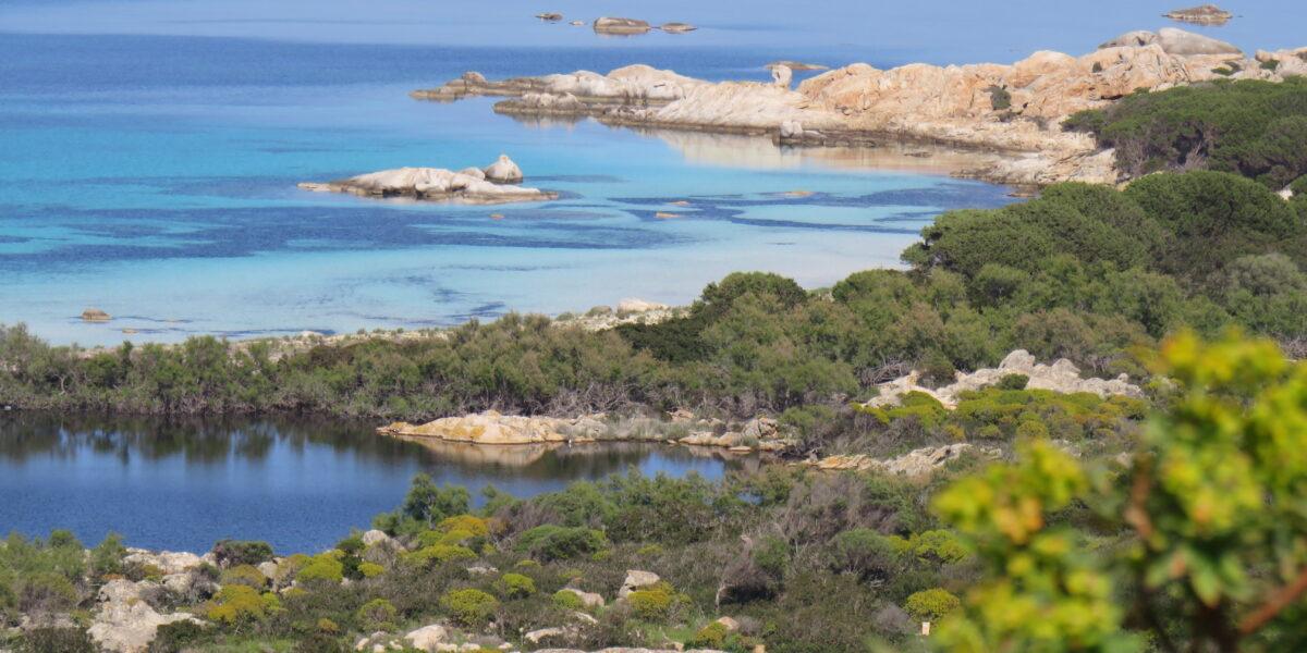 asinara tour - Nadir Sardinia